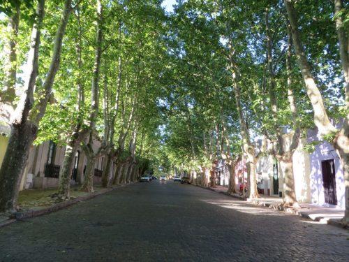 Foto: rua em profundidade